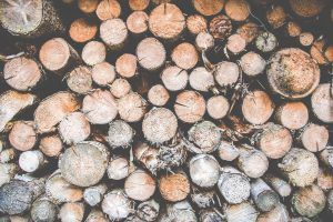 photo of a pile of logs